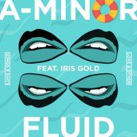 A-Minor – Fluid Cover Art